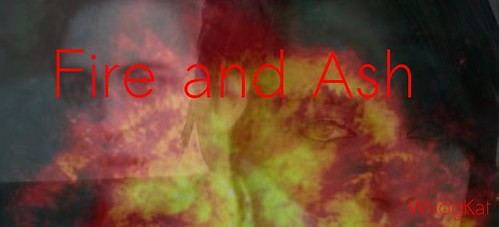 Fire and Ash Banner