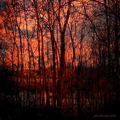 Sky's Aglow (John_Phillips) Tags: composite rust johnphillips celeryfarm sharingart awardtree marculescueugendreamsoflightportal