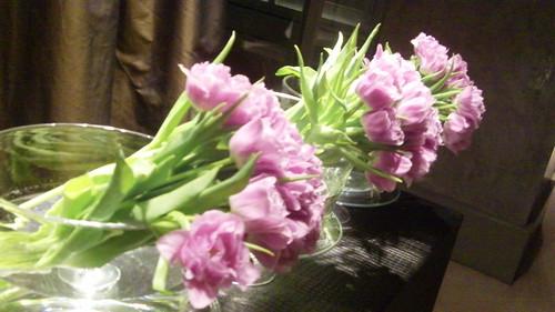 Fresh Flowers, Hotel Arts