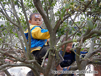 Two kids hiding on the trees