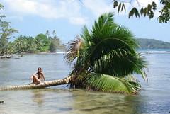 PANAMA (Ele Spoerer) Tags: surf playa panama bocasdeltoro centroamerica ciudaddepanama