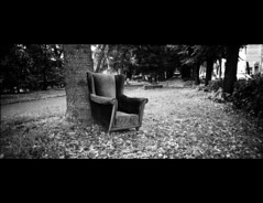 the armchair (Giorgio Verdiani) Tags: blackandwhite italy film gardens river point florence italia shot fiume wideangle panoramic firenze hp5 r1 24mm arno armchair ilford ricoh biancoenero compact giardini 400asa lungarno poltrona pellicola lungarni compatta grandangolare blancoinegro 13x36