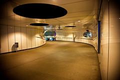 Kop van Zuid, Rotterdam-10 (Vera Vandervesse) Tags: rotterdam kopvanzuid steden architectuur