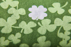 (076/365) Lucky 4 Leaf Clover