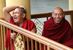 we don't stop laughing because we grow old... (ioannis lelakis) Tags: india 20d funny humor monk buddhism 2006 april tibetan laughter f71 dharamsala ganj mcleod 1250s 24105l