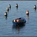 La Pesca - Olbia