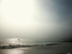 tranquility. (alexita.) Tags: ocean blue sky brown sun sunlight white beach water yellow fog sand waves tranquility lagunabeach alexr