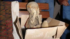 Police recover Inca mummy among artefacts to sold on black market