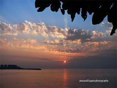 (Anwar Kapasi) Tags: sunset sun leaves clouds dramatic maharashtra mumbai fz50 akapasi