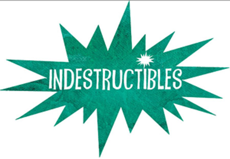 Indestructiblesbloglogo2