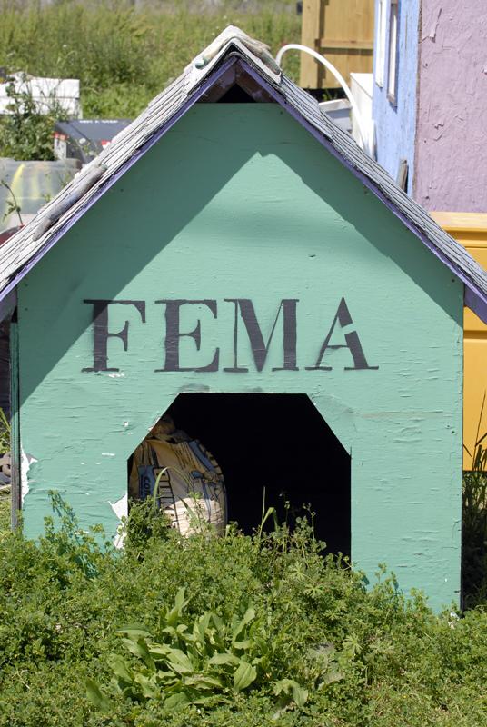 FEMA feelings