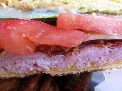 thirsty dog tavern - sandwich zoom