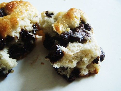 64 - english cream chocolate chip scones