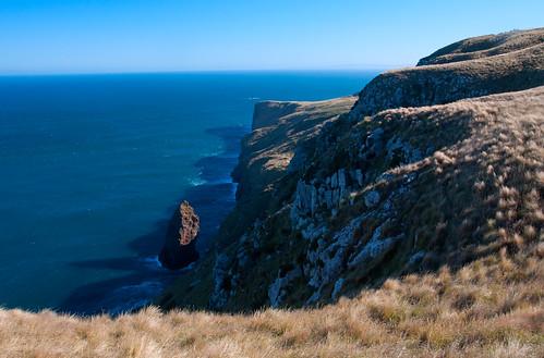 Otago Peninsula 13