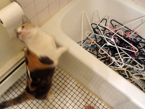Fisby bathtub of hangers