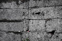 Auschwitz I (Stammlager) (Pavel Hrubo) Tags: poland auschwitz birkenau polsko tbor koncentran koncentrk osvtim bezinka
