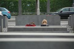 DSC_2131 (daniel.frickel) Tags: berlin belgium heide photoproject kalmthout