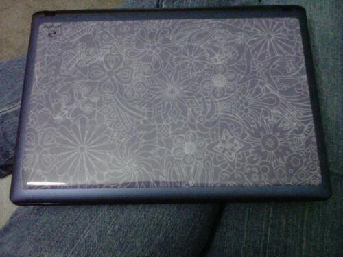 Netbook skin