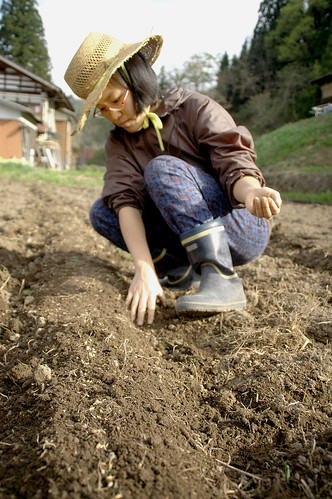 Tomoe In the Garden