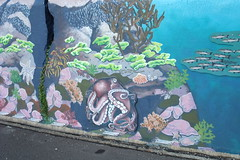 NZ 018