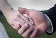 DSC_7351 (pioneerzachgillit) Tags: lighting camera wedding portrait field barn photography bride farm off arkansas bridal strobist