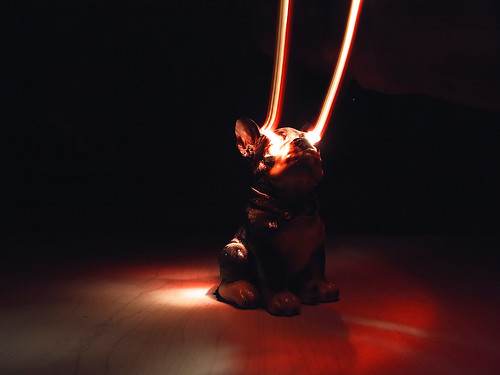 Dog 02 / Light Painting