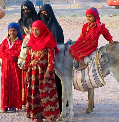 bedouininfo marriage and gender roles