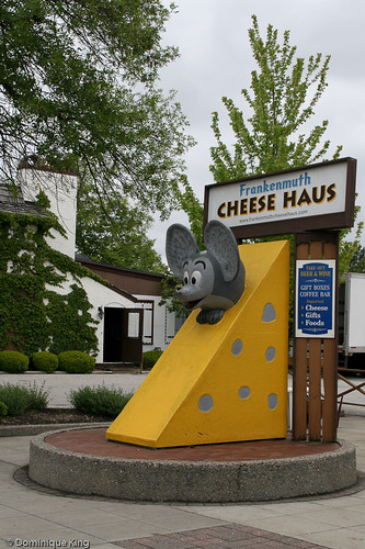 Frankenmuth Cheese Haus-10