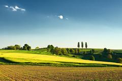 ___________|||____ (Dennis_F) Tags: blue trees sky tree green colors field yellow landscape landscapes sony felder himmel wolken sigma gelb fields grn blau dslr 50 baden karlsruhe landschaft bume 50mmf14 landschaften sigma50mm weingarten sigmalens a700 kraichgau festbrennweite thethreetrees sonyalpha sonydslr jhlingen sigma5014 sigma50mmf14 alpha700 sonya700 sonyalpha700 dslra700 sigmaobjektiv gettygermanyq2