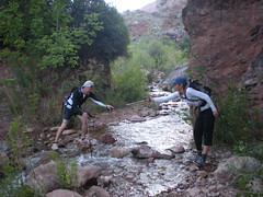 Teamwork Crossing Stream by Cottonwood Campground