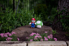 Mario attended the wedding and brought some mushrooms!