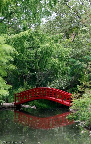 Cranbrook Gardens-11