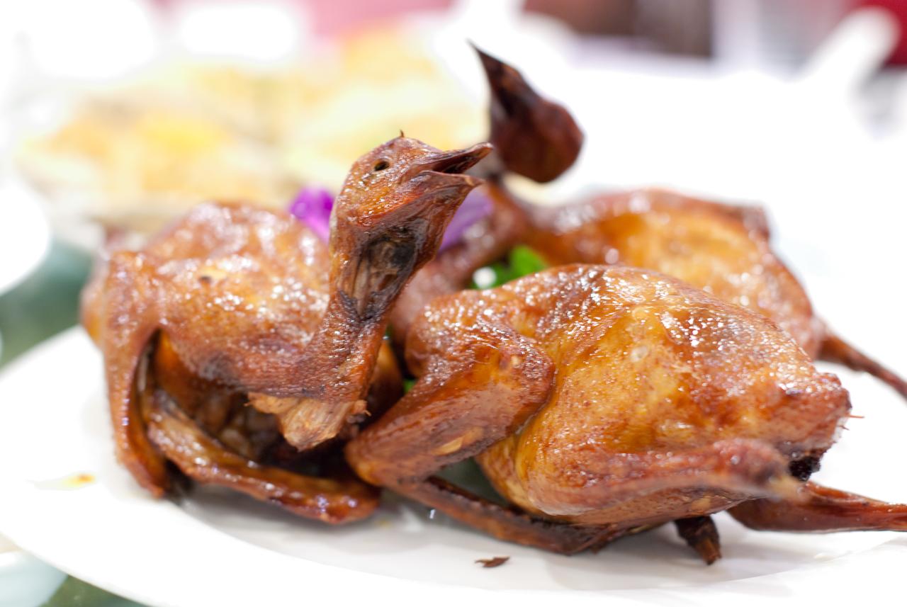 Barbecued Pigeons 紅燒乳鴿