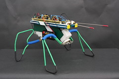 Gnat Walking Robot