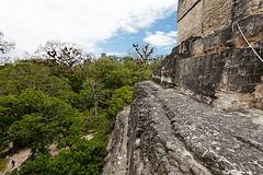 baudchon-baluchon-guatemala-tikal-76