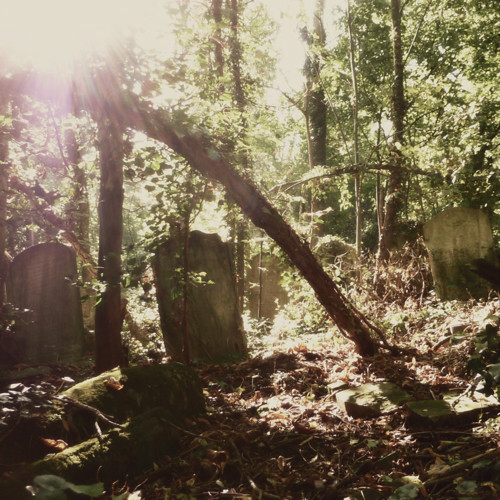 Nunhead Cemetery 3~ gravestones