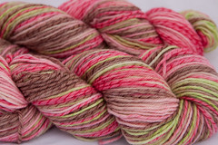 *Pre-Order* Ruth on Yarn of choice - 4 oz. (...a time to dye)