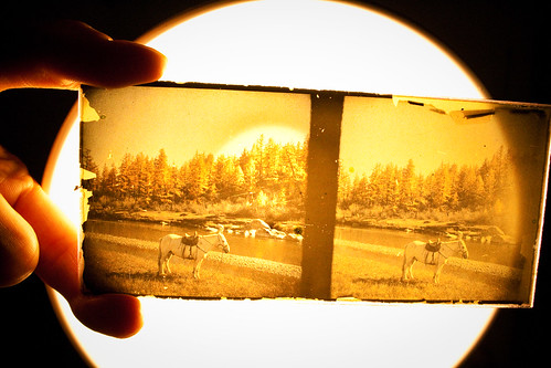 Vintage photography from the attic