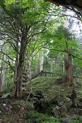 IMG_2628 (normafincher) Tags: japan nikko nikkonationalpark