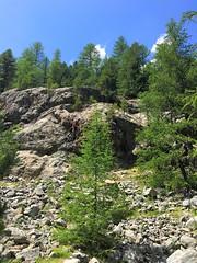 tough climber (view large) (Sylvia Okkerse) Tags: klettern climbing rockclimbing steepnrock switzerland graubûnden grissons astoundingimage