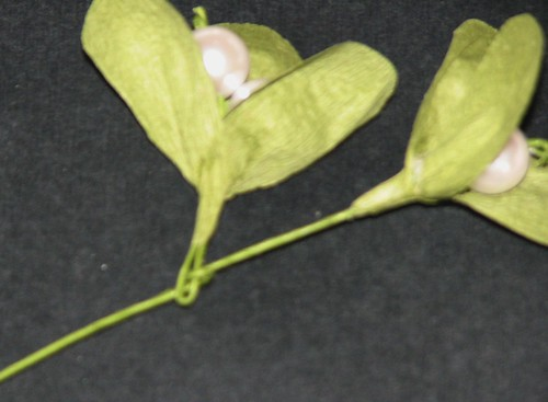 Mistletoe 012