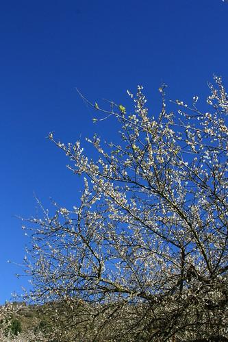 天空藍到不像話