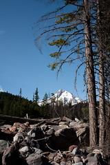 IMG_5305 (Liza Carlson) Tags: trees mountain nature rock oregon landscape or mthood washout cascademountainrange mthoodnationalforest