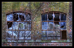 IMG_0017_2___1 (Images By Cristina) Tags: ny newyork longisland kingsparkpsychiatriccenter