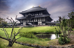 Todaiji temple in Nara, Japan (dleiva) Tags: japan asia nara budist japon buda templo todaiji budismo japn kansay