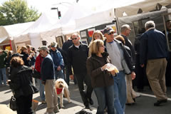 Bethesda Row Arts Festival (by: Bethesda Row Arts)