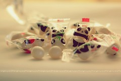 & (sndy) Tags: panda 2010  sindy