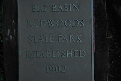 Big Basin HQ Photo