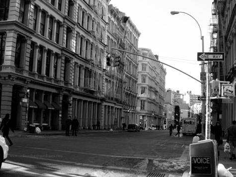 New-York_Feb052009_0352BWweb