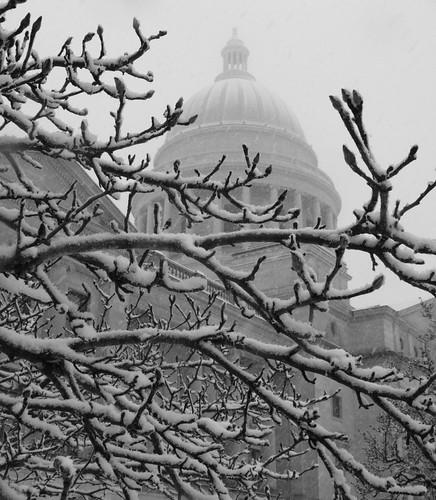 snowpocalypse!!!! omg